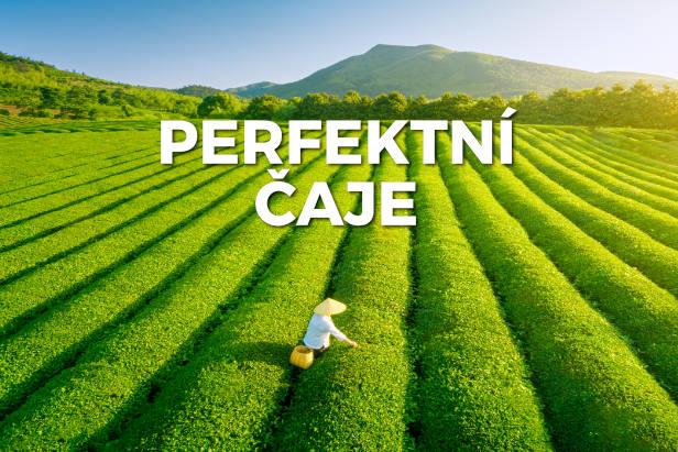 Perfektní čaje